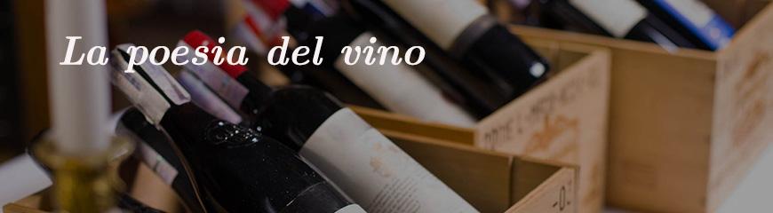 Bottiglie di vino di qualità