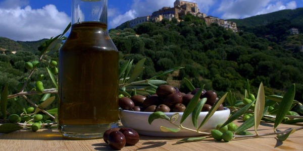 Tasting of the week: a wonderful olive oil from Sicily